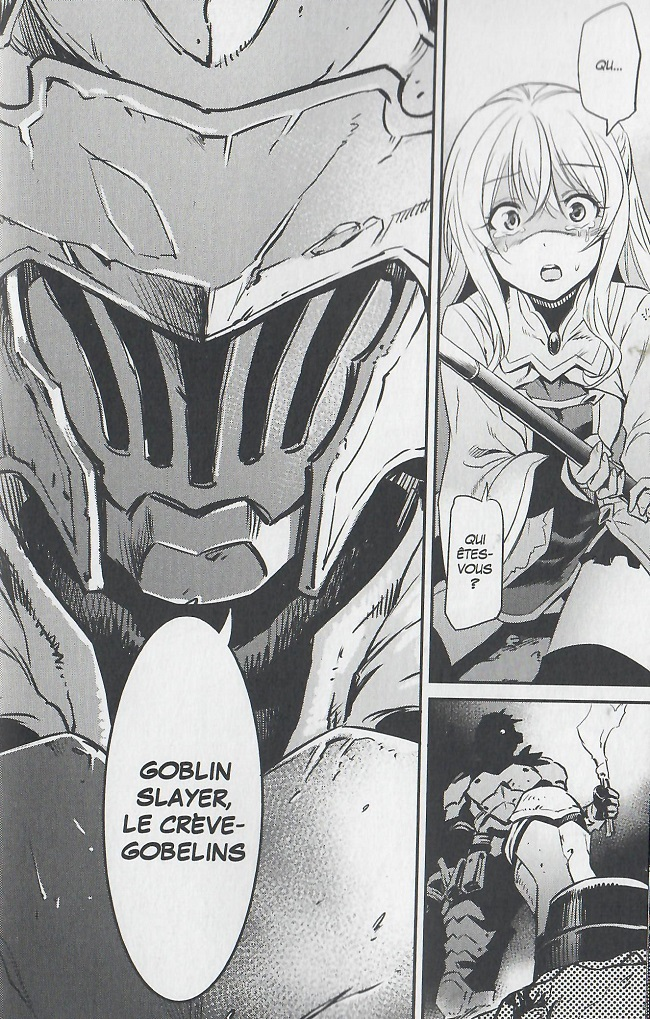 Goblin Slayer-héros