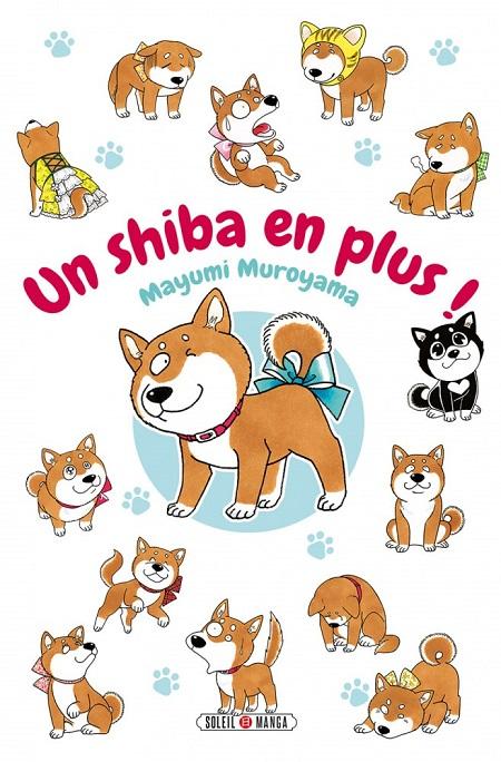 Un shiba en plus (06/03/19)