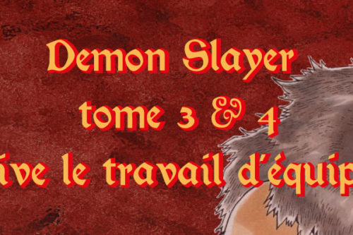 Demon Slayer T3 & 4