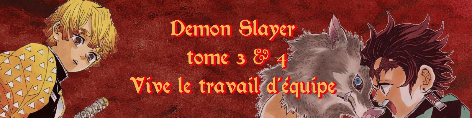 Demon Slayer T3 & 4