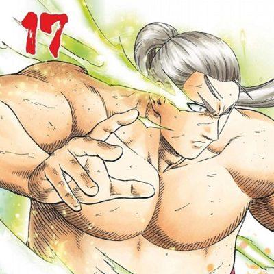 Hinomaru Sumo T17