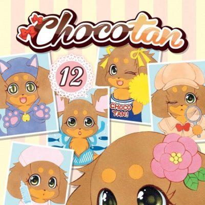 Chocotan T12 (11/12/19)