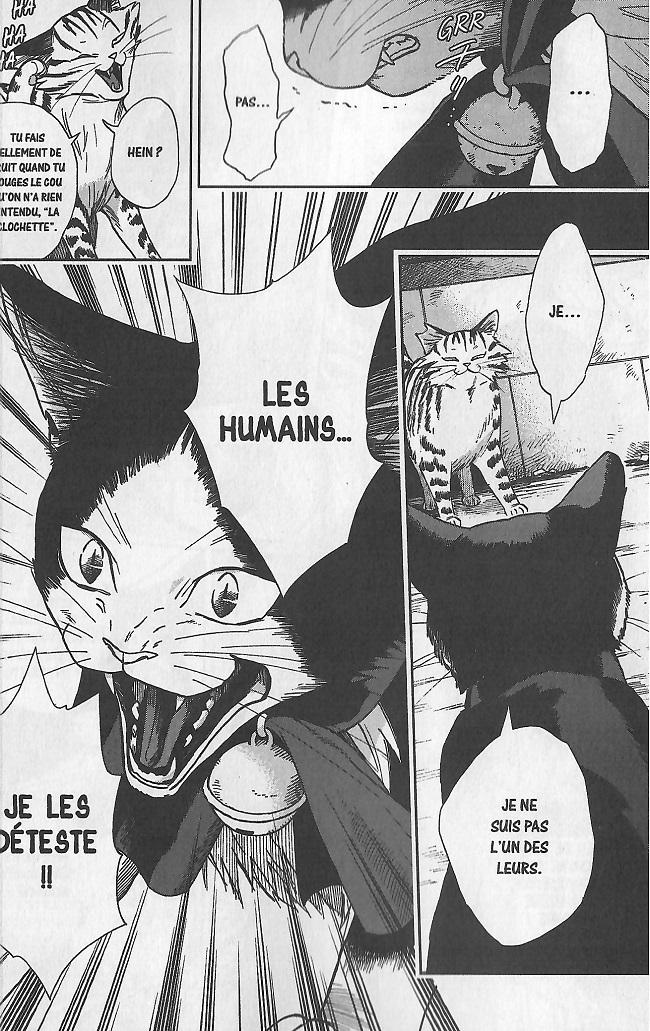 Le chat aux sept vies-Nanao