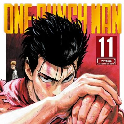 One-Punch Man T11